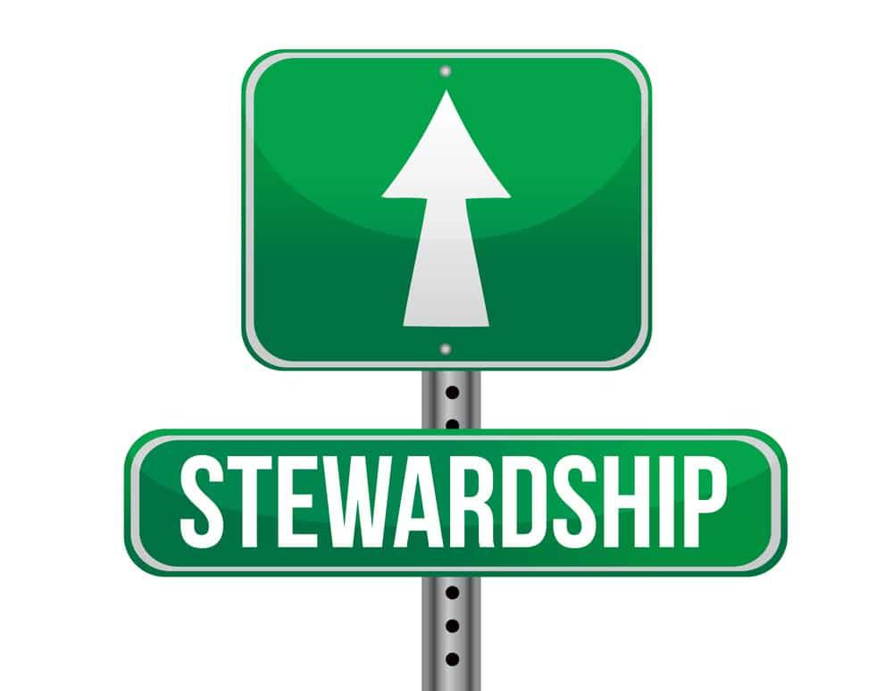 brand stewardship