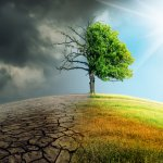 5 Reasons to Build Your Brand on the Mitigation of Climate Change